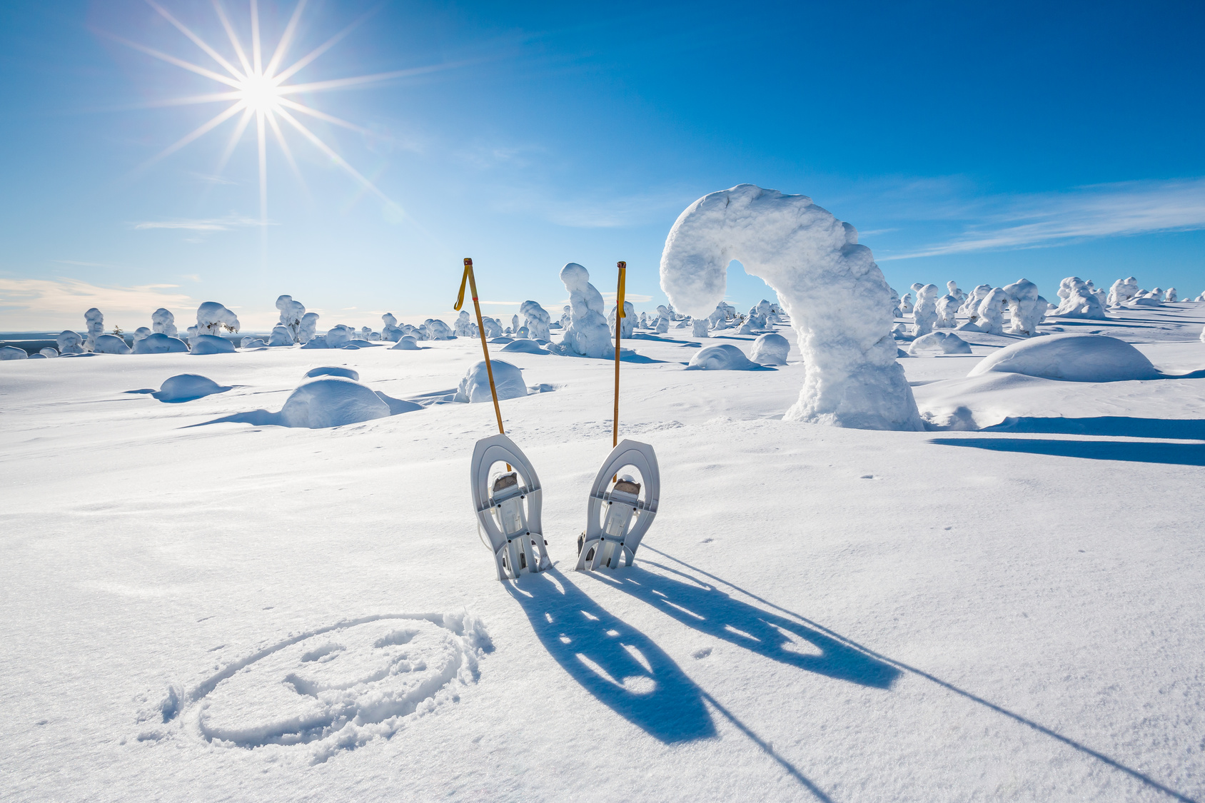 Nordic Skiing and Snowshoeing